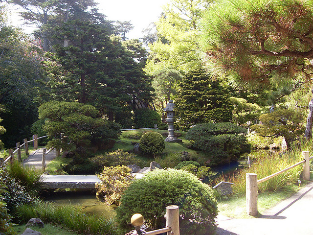Japanese Tea Garden, Flowers and Leaves in San Francisco (Sundays In My City)