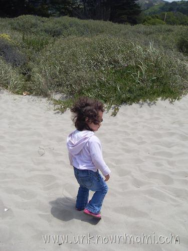 Sand on Stinson Beach