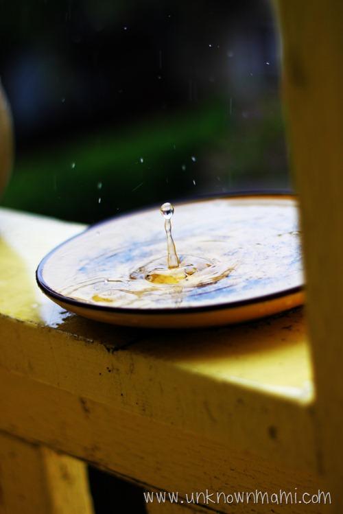 Rain in plate