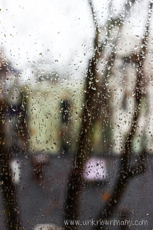 Raindrops on Windows