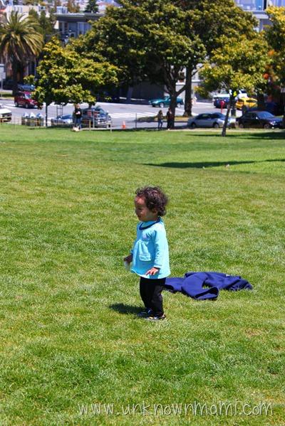 Dolores Park Lawn