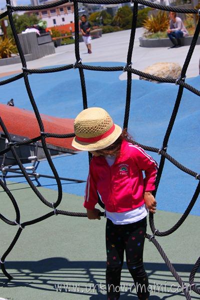 Dolores Park Web