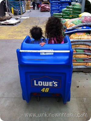 Lowe's-Shopping-Cart