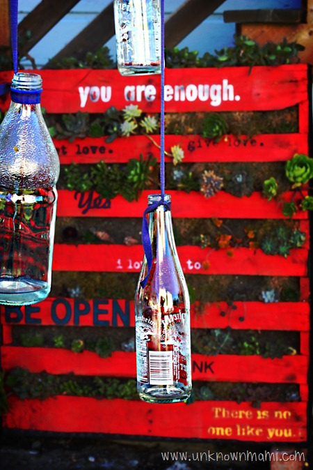 Hanging glass bottles.
