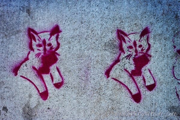 Cats stenciled on sidewalk.