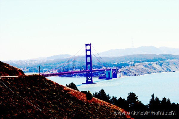 View-of-Golden-Gate-from-Marin-unknownmami