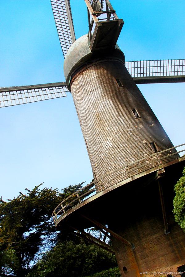 Windmill-unknownmami