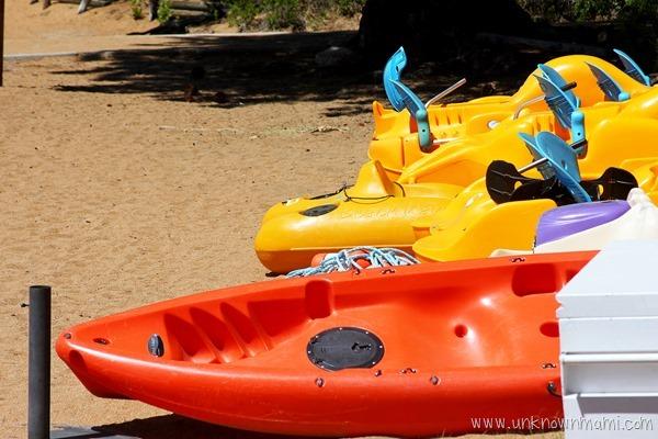 Paddle boats at Lake Tahoe