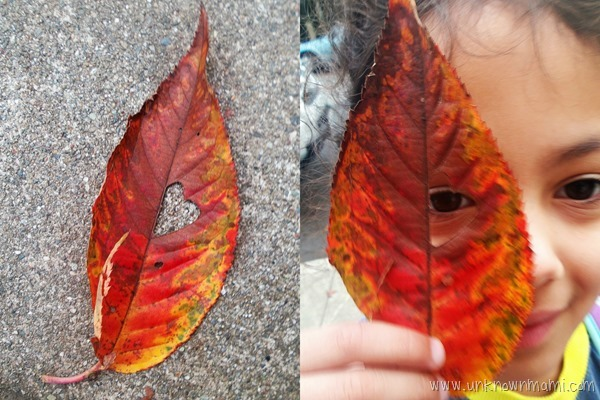 Leaf with a heart on it
