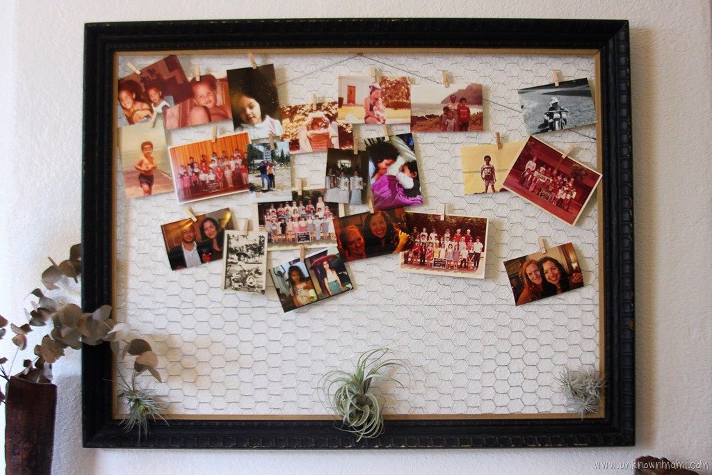 DIY Chicken Wire Frame - By Claudya