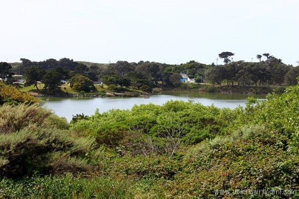 Lake Merced in San Francisco