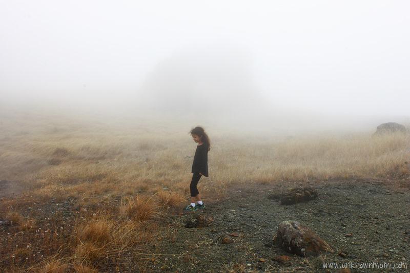 Mount Tamalpais on a foggy day
