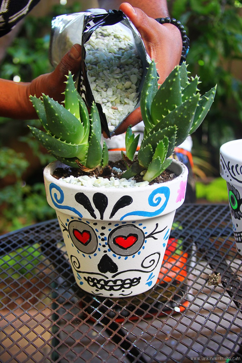 How to make Day of the Dead planters