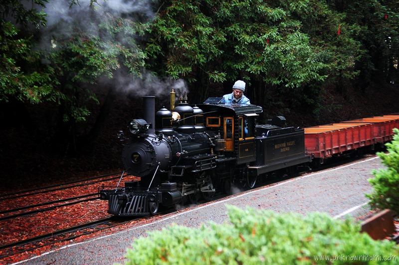 Steam Train at Tilden Park