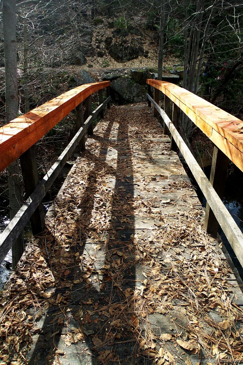 Mill Pond Bridge, Sugar Pine, California