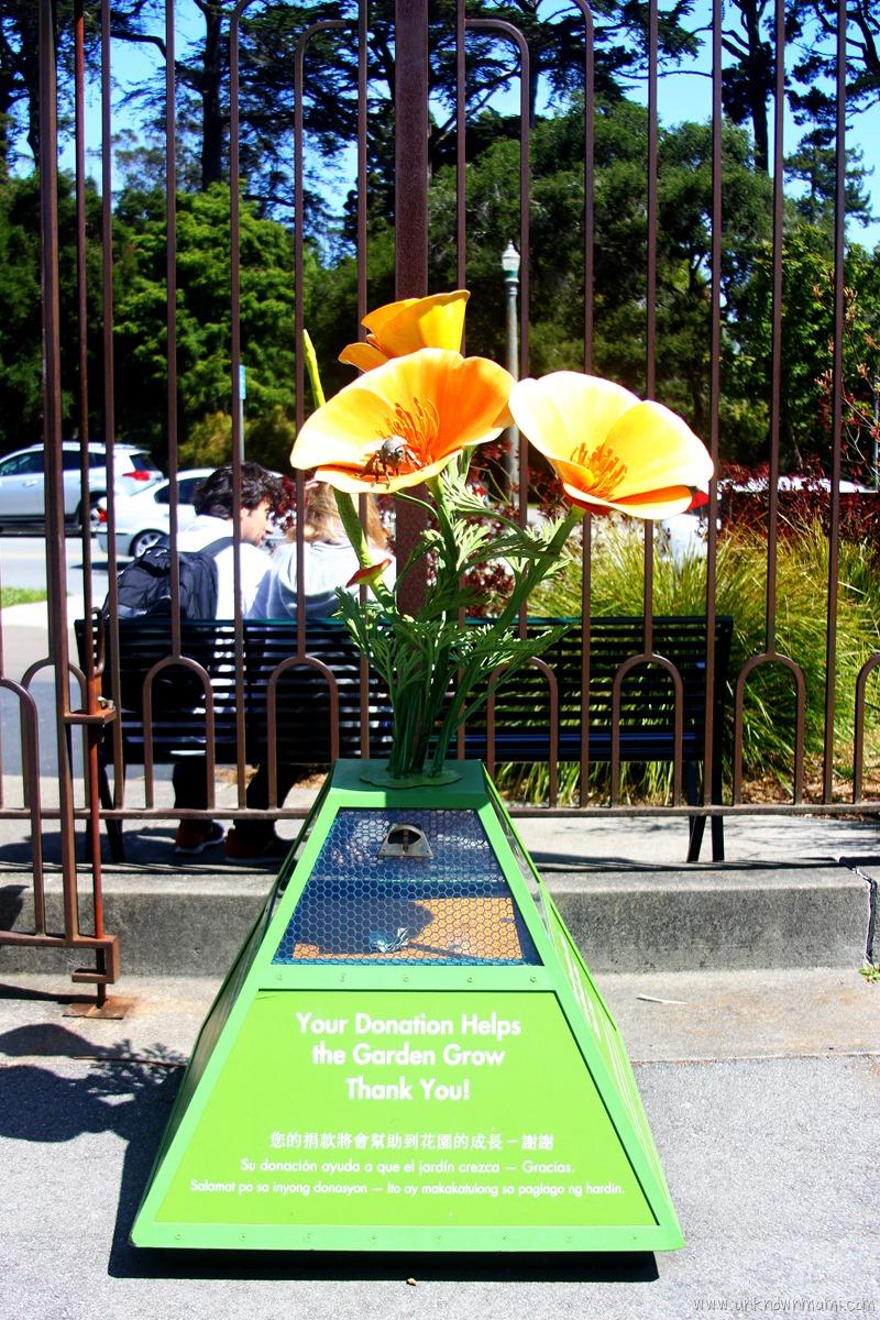 SF Botanical Gardens Donations Box