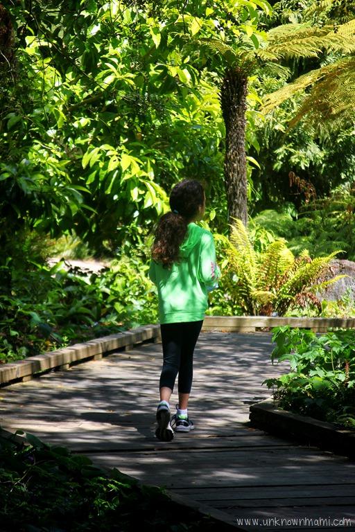 San Francisco Botanical Garden Sundays In My City By Claudya