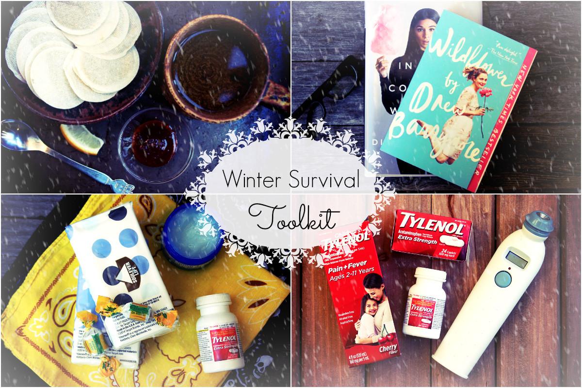 Winter Survival Toolkit