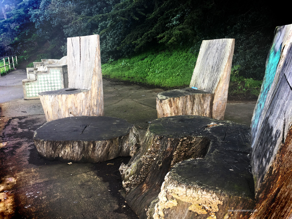 Tree Stump Chairs Fort Mason Unknownmami