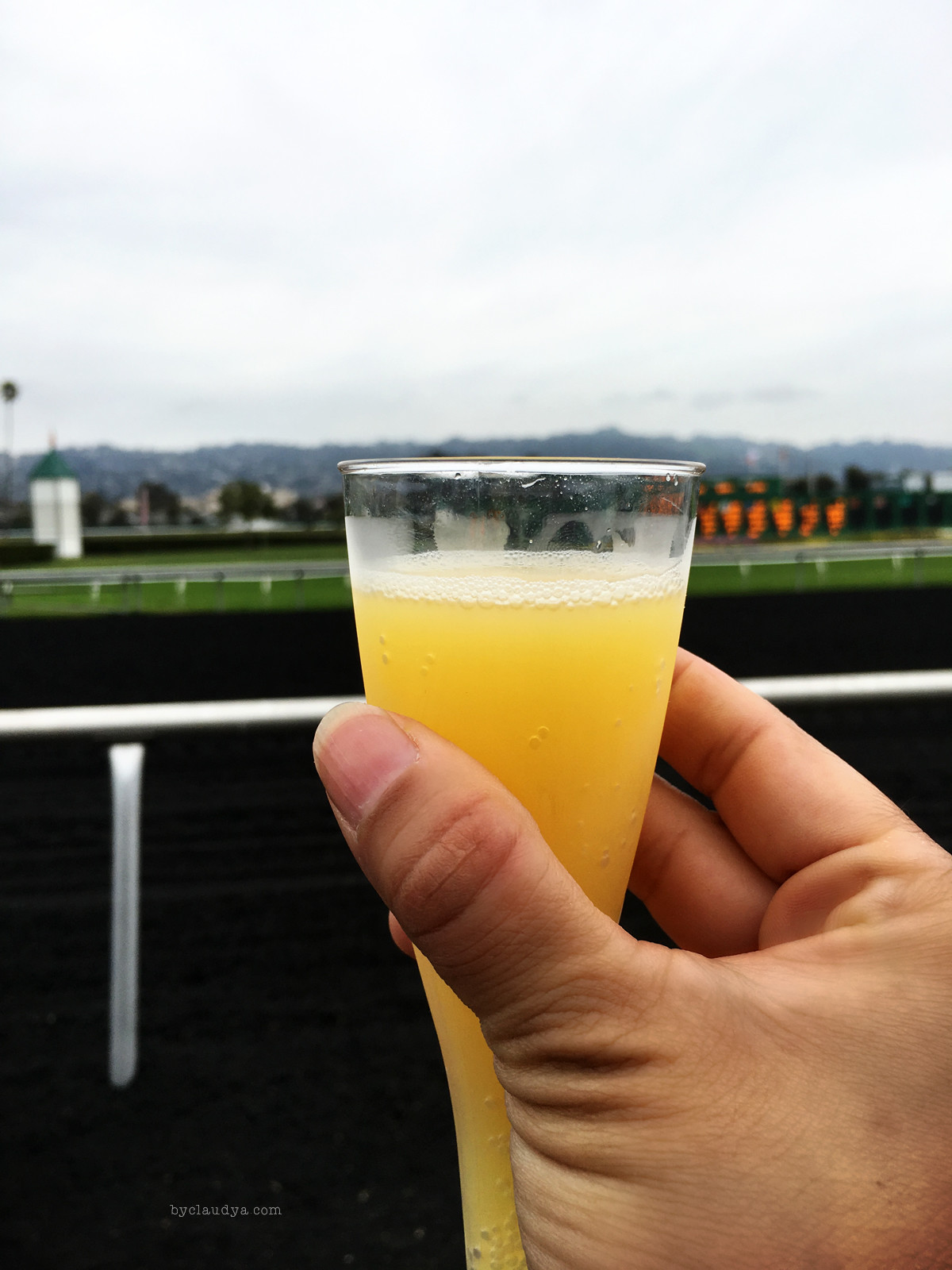 Mimosas at Golden Gate Fields