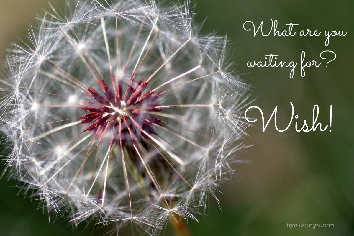 Wishes Are for Everyone (Wednesday Wishes)