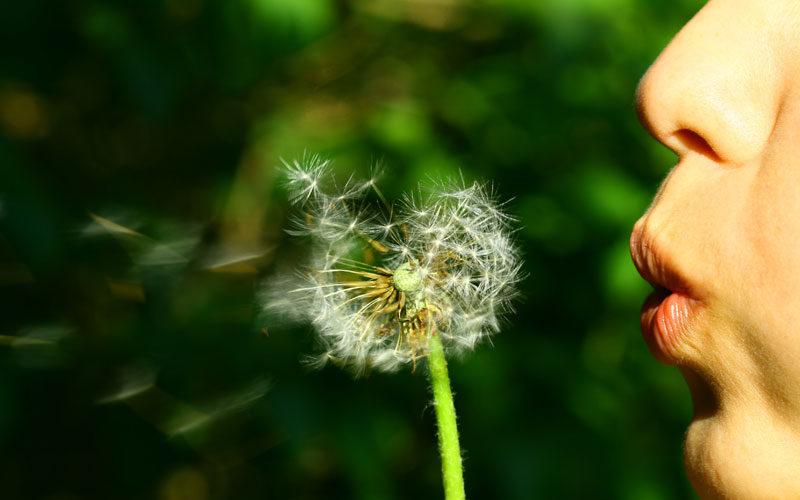 Let Abundance Flow (Wednesday Wishes)