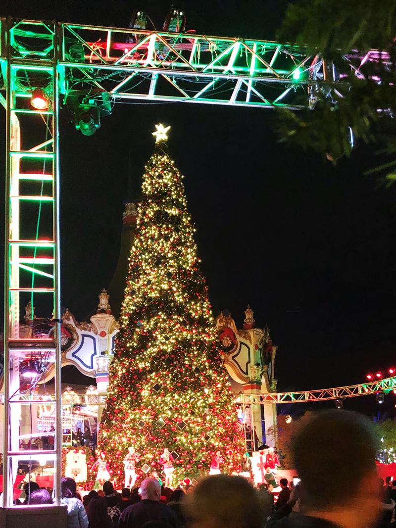 christmas tree lighting great america